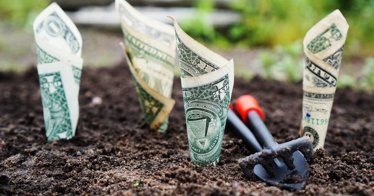 Peste 300.000€ investiți de un român într-o rețea de magazine agricole