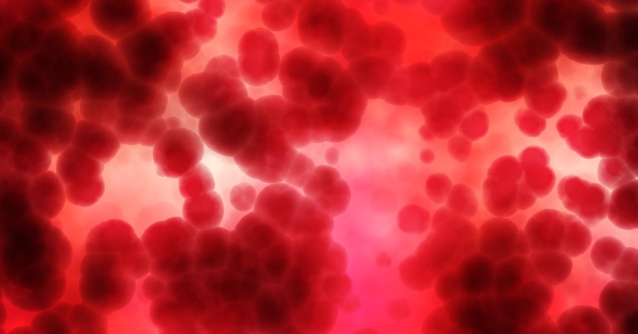 Donorium, aplicația care îți dă puncte și medalii dacă donezi sânge