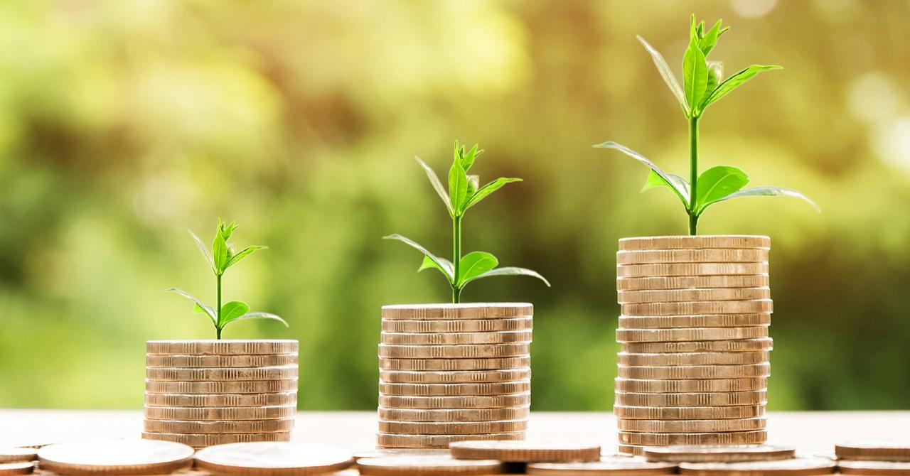Fost ministru pentru IMM-uri: va mai continua PNL Start-Up Nation?