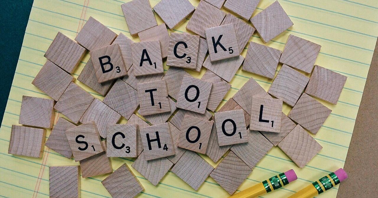 Reduceri înainte de începerea școlii: Back to School cu stil