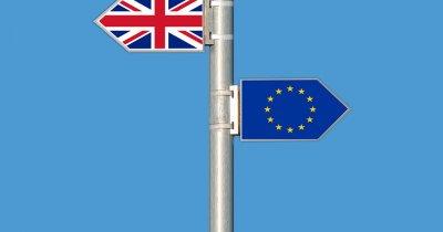 Efectul Brexit - IMM-urile britanice nu mai sunt optimiste în privința exportului