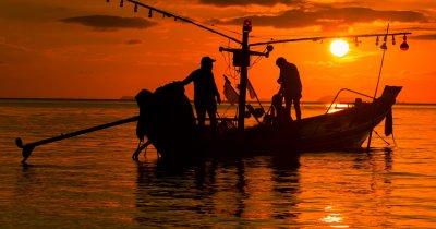 Aplicația românească pentru pescari e disponibilă pe Android și iOS