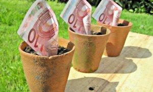 Start-Up Nation România - programul începe pe 15 iunie, la ora 10.00