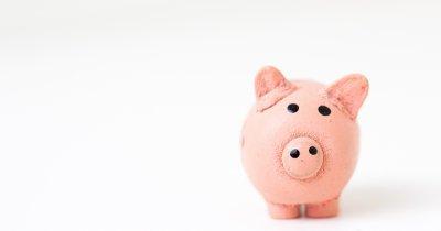 Cum să faci bani rapid?