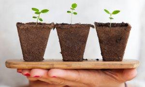 Opt modalități pentru a crește afacerea