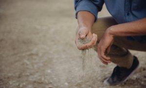 Românul îndrăgostit de agricultură și care investește mereu