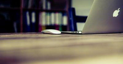 Abilități la mare căutare în rândul freelancerilor