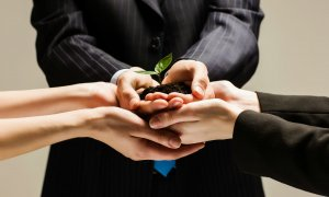 Antreprenori, mentori și investitori - cum cresc împreună un startup