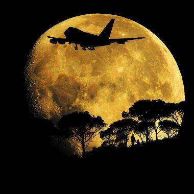 Primul venit, primul trimis pe Lună: SpaceX anunță numele pasagerului