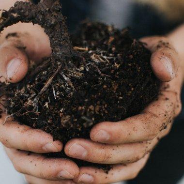 Vremea schimbării: cum au transformat doi tineri un business agricol