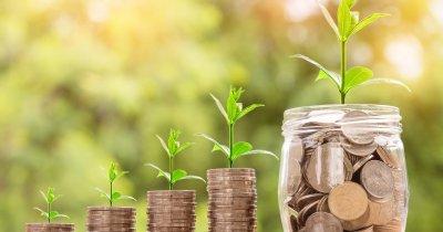 Ce este și ce nu este dividendul?