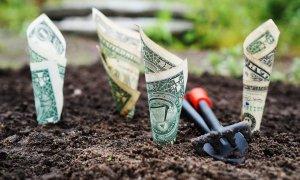Start-Up Nation 2018/2019: oferta BCR pentru credit punte