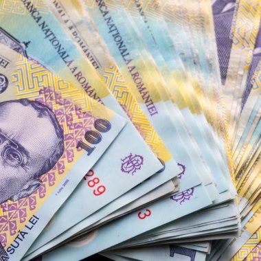 Analiza economiei românești: microîntreprinderile sunt esențiale