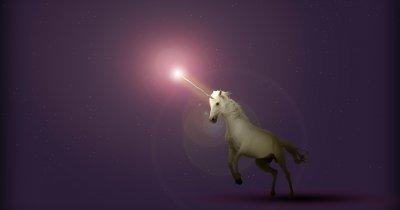 Fiecare investitor vrea să fie cel care descoperă următorul unicorn