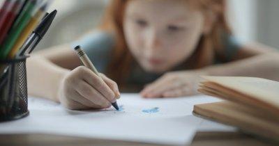 AmCham Romania face apel la autorități să continue procesul de educație