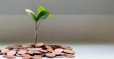 IMM Invest, program de creditare de la stat pentru micii antreprenori