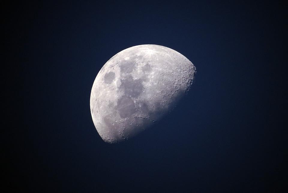 luna moon elon musk antreprenor succes