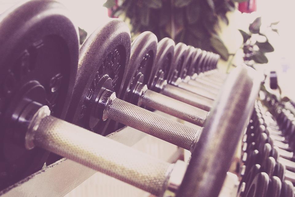 sport fitness startup business idei de afaceri